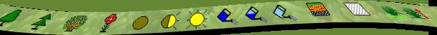 информационные символы для растений