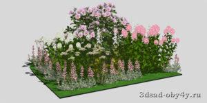 3Д вид цветника с флоксами и розой