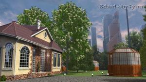 фотография дома в фотографии проекта