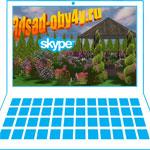 уроки обучения работе в Наш Сад по Skype