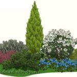 3D вид цветника с хвойниками, гортензией, барбарисом и колокольчиком