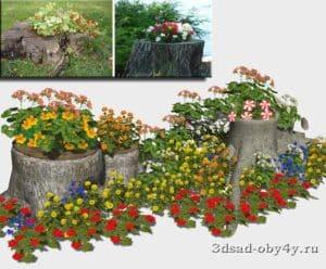 визуализация цветочная композиция на пне