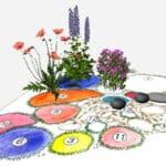 импортированная схема цветника в 3D виде