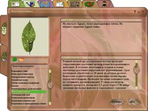окно каталога болезней растений